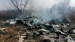 Видео сместа крушения самолета-амфибии вХабаровском крае