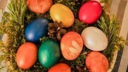 Пасхальный флешмоб: Собчак, Слуцкер идругие бьют яйца всети