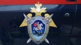 СКРФпроводит проверку пофакту массовых убийств вКарелии вгоды ВОВ