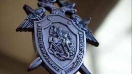 СКвозбудил уголовное дело пофакту жестокого избиения ребенка матерью вНовороссийске