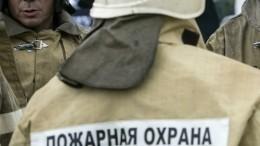 Частная лесопилка полыхает вНовгородской области