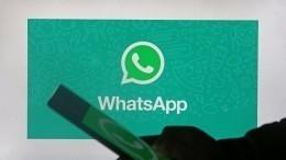 WhatsApp может стать цифровым паспортом человека иего онлайн-кошельком