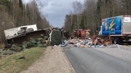 Военный грузовик сбоеприпасами имусоровоз столкнулись вНовгородской области
