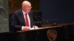 «Что это зафлаг»: Небензя сделал замечание представителю Косова занарушение