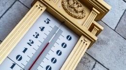 ВГидрометцентре заявили, что 2020 год станет рекордно жарким