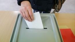 Кампания поединому дню голосования начнется непозднее 15июня