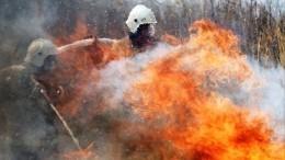 Аномальная жара илесные пожары атаковали Сибирь иЗабайкалье