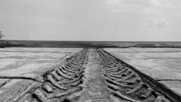 «Дорогу жизни» отремонтировали вЛенинградской области