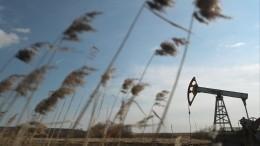 Египетский миллиардер спрогнозировал рост цен нанефть до100 долларов