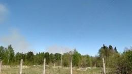 Сухая трава полыхает наместе бывшего артиллерийского арсенала вУдмуртии