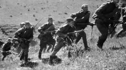 ВМИД РФвозмущены попытками США принизить роль СССР впобеде над нацизмом