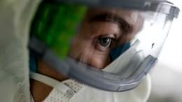 Энтомолог оценила риск инфицирования коронавирусом отнасекомых