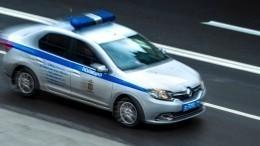 ВПодмосковье два грабителя магазина тяжело ранили полицейского