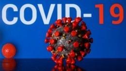 Коронавирус вРоссии имире: актуальные данные на15мая