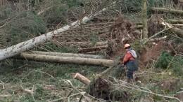 Штормовое предупреждение из-за ураганного ветра объявлено вХакасии