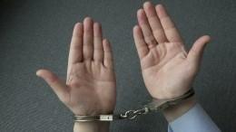 Лжеомбудсмену предъявили обвинение враспространении порнографии