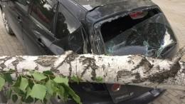 Сорванные крыши, поваленные деревья ибашенные краны: мощный ураган обрушился наЕкатеринбург