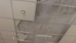 Дом коммунального ужаса: потолок грозит упасть нажильцов дома вПетербурге
