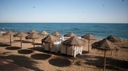 Почему маски наобщественном пляже ненужны? Мнение вирусолога
