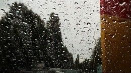 «Ждите рыбнадзор»: Позатопленным улицам Брянска плавают «гондольеры»— видео