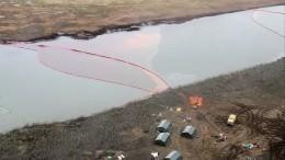 Глава Росприродназора вылетела вНорильск для оценки масштаба экологической катастрофы