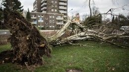 Ливень, гроза, шквалистый ветер: Северный Кавказ оказался вэпицентре урагана