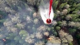 Российская военная авиация будет задействована втушении лесных пожаров