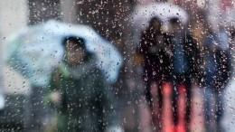 Погодные качели: насмену смерчам иливням наРоссию надвигается аномальная жара