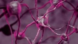 Хронический стресс может вызвать воспаление мозга— американские ученые