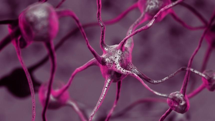 Хронический стресс может вызвать воспаление мозга