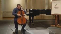 Знаменитые музыканты провели онлайн-уроки врамках проекта «Посольство мастерства»