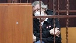 Отустроившего смертельное ДТП Ефремова отказался адвокат