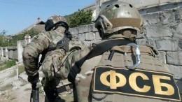 Масштабная спецоперация позадержанию подпольных оружейников прошла в15 регионах России