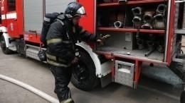 «Бегал как зверь вклетке»: пациент психоневрологического института вПетербурге устроил пожар
