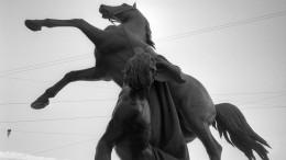 Вандалы, распивавшие пиво набронзовом коне вцентре Петербурга, повредили памятник