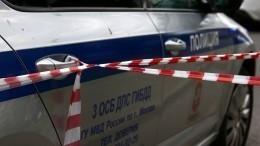Напавшего насотрудников ДПС вМоскве отправят напсихиатрическую экспертизу