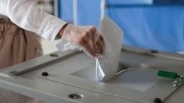 Более 250 тысяч заявок отнаблюдателей заголосованием попоправкам вКонституцию поступило вОбщественную палату РФ