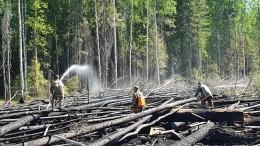 Режим ЧСвведен наКамчатке из-за природных пожаров
