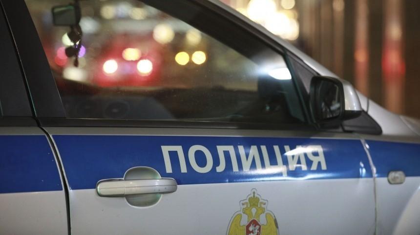 ВПетербурге троих подростков задержали засерию грабежей