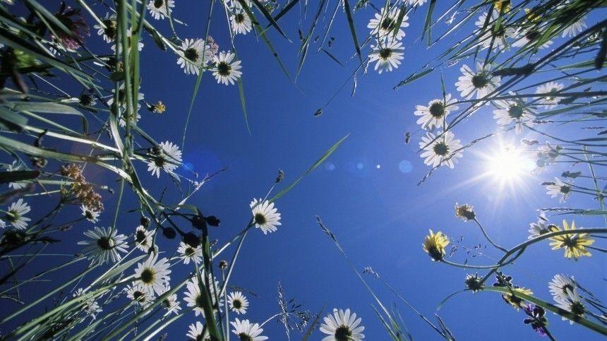 День летнего солнцестояния: что можно ичто категорически нельзя делать 21июня