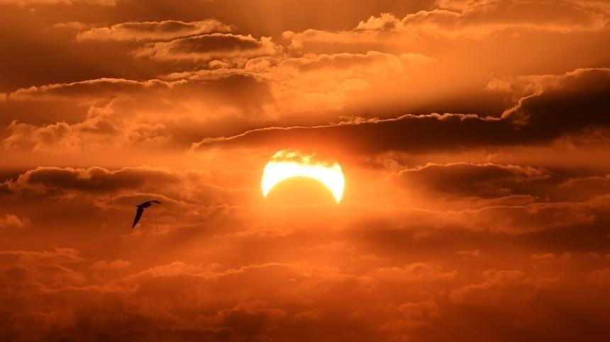 «Кольцо огня»: Земляне делятся всоцсетях эффектными кадрами солнечного затмения
