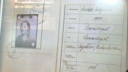 Уничтожали целыми деревнями: рассекречены документы ожутких зверствах нацистов вКрыму