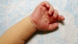 Фото изквартиры вМоскве, где были обнаружены пять новорожденных детей
