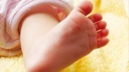 Адвокат рассказал о«суррогатных младенцах», найденных вквартире вМоскве