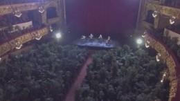 Аншлаг! Оперный театр вБарселоне устроил концерт для растений