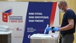 Комиссия СФнаправит компетентным органам данные овмешательстве вголосование попоправкам