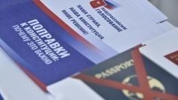 Возможность «двойного» голосования попоправкам вКонституцию исключена
