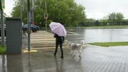 Европейскую часть России ожидает аномальное похолодание