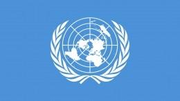 «Альтернативы ООН— нет»: Василий Небензя онеидеальной организации