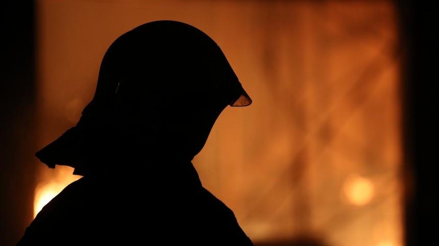Трое детей иодин взрослый погибли при пожаре вНижегородской области